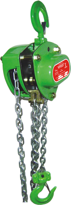 speed-spur-geared-chain-pulley-sideview-t-seres